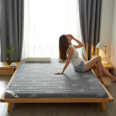2021新款  椰棕床垫—成人款 1.0m床 艾草灰