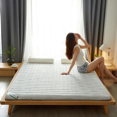 2021新款  椰棕床垫—成人款 1.0m床 高贵白