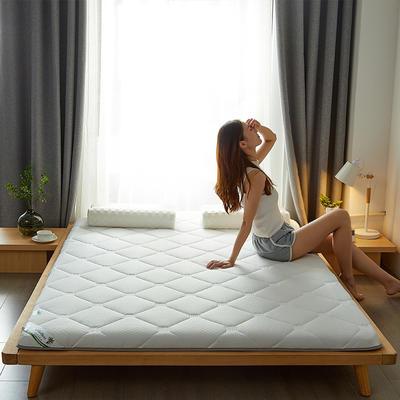2021新款  椰棕床垫—成人款 1.0m床 经典白