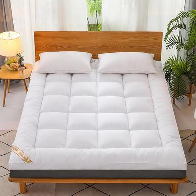 2021新款羽丝绒立体床垫 1.0m 白色