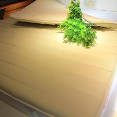 彩翼家纺毯垫类 1.5m(5英尺)床 乐肤保暖床垫