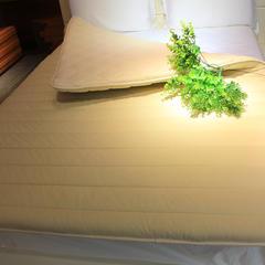 乐肤保暖床垫 1.5m(5英尺)床 乐肤保暖床垫