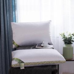 2018新款精品蚕丝枕 精品蚕丝枕(48*74cm)