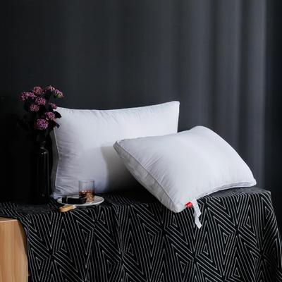 2019新款立体白布枕 白色48*74cm中枕