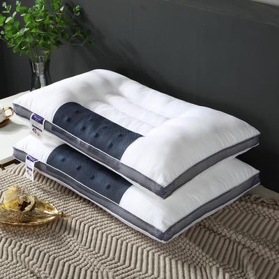 2109新款立体兰网磁石枕芯 白色