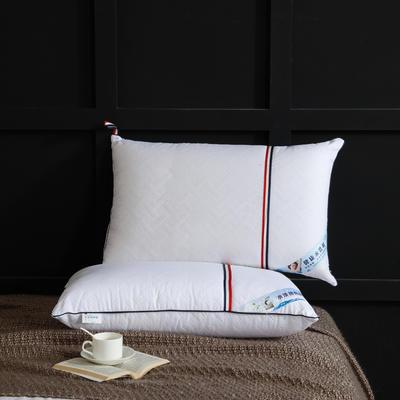 2020新款中性风枕枕头枕芯-48*74cm/个 中性风枕