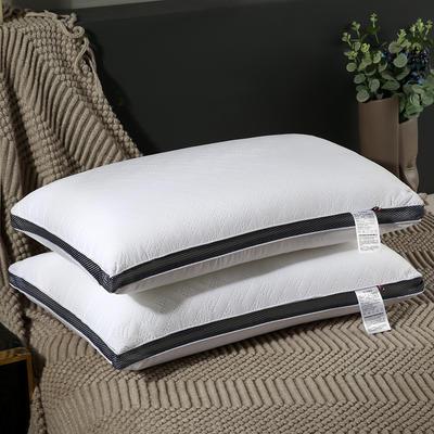 2020新款兰网水洗羽丝绒枕-48*74cm/个 水洗羽丝绒枕