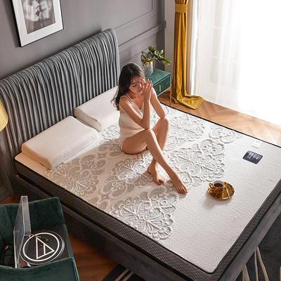 2020新款300克浮雕针织棉乳胶功能床垫 90*200cm 乳胶K02-01  厚度4cm记忆棉