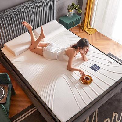 2020新款300克浮雕针织棉乳胶功能床垫 90*200cm 乳胶K02-05  厚度4cm记忆棉