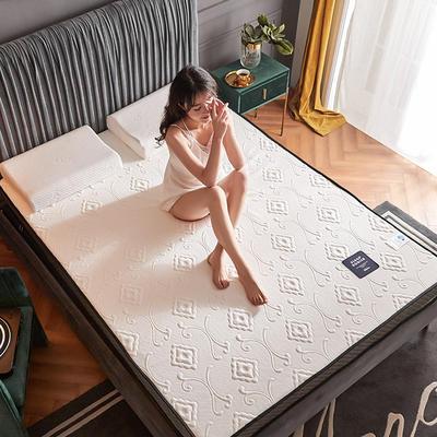 2020新款300克浮雕针织棉乳胶功能床垫 90*200cm 乳胶K02-08  厚度4cm记忆棉