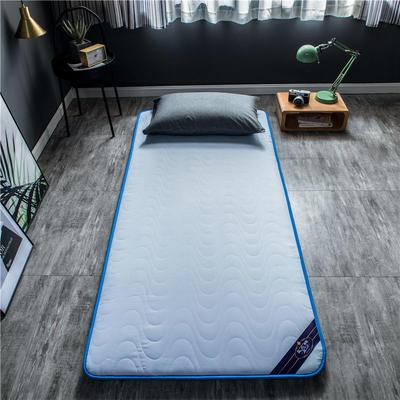 2020新款洛卡棉抗菌功能学生床垫 90*200cm 浅蓝色