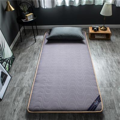 2020新款洛卡棉抗菌功能学生床垫 90*200cm 浅紫色