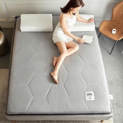2020新款石墨烯纤维功能床垫 100*200cm 石墨烯K01-1(厚度9cm)