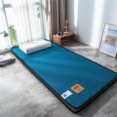 2020新款泰国天然300克浮雕针织棉乳胶功能床垫 90*200cm 玛雅—靛青(厚度4cm记忆棉)