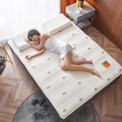 2020新款针织绣花纱布乳胶功能床垫 90*200cm 乳胶K04-4(厚度6cm)