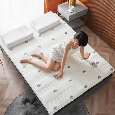 2020新款针织绣花纱布乳胶功能床垫 90*200cm 乳胶K04-6(厚度9cm)