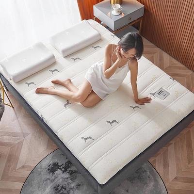 2020新款针织绣花纱布乳胶功能床垫 90*200cm 乳胶K04-7(厚度9cm)