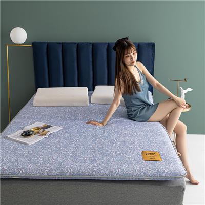2020新款羊毛科技床垫 90*190cm 水蓝