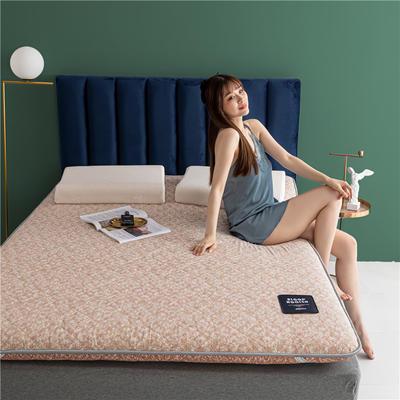 2020新款羊毛科技床垫 90*190cm 玉粉