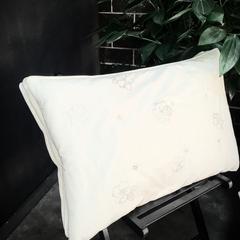 枕芯     蚕丝枕 蚕丝枕