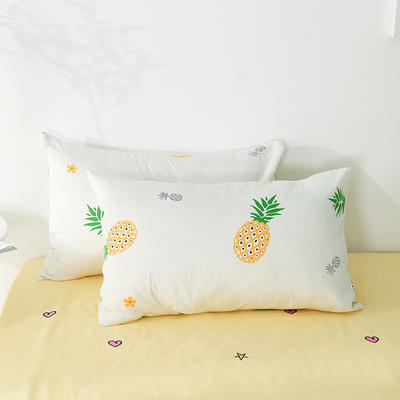 2020年新款全棉枕套一对装 48cmX74cm/对 菠萝