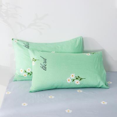 2020年新款全棉枕套一对装 48cmX74cm/对 春暖花开