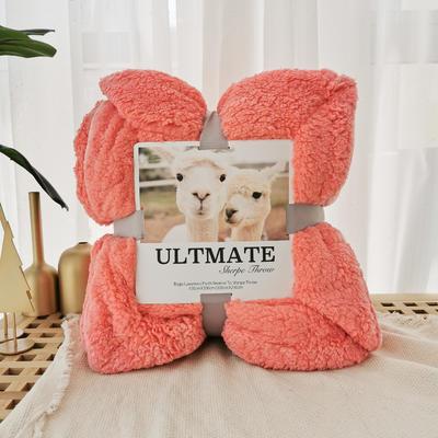 马卡龙双层羊羔绒毛毯加厚单双人盖毯珊瑚绒毯子 200*230cm coco橘