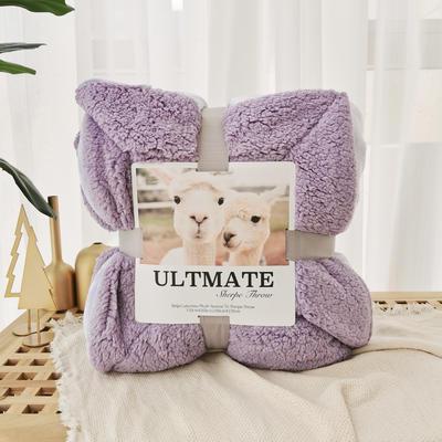马卡龙双层羊羔绒毛毯加厚单双人盖毯珊瑚绒毯子 150*200cm 安娜紫