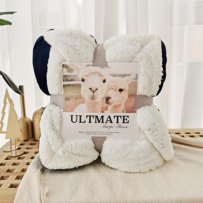 马卡龙双层羊羔绒毛毯加厚单双人盖毯珊瑚绒毯子 150*200cm 帝王蓝