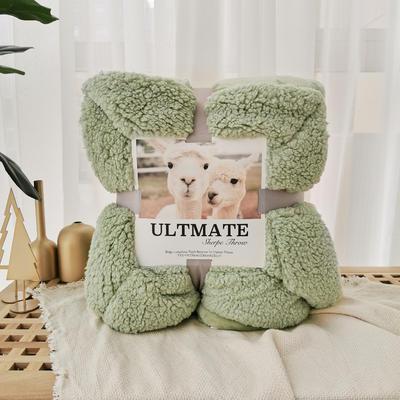 马卡龙双层羊羔绒毛毯加厚单双人盖毯珊瑚绒毯子 200*230cm 木果绿