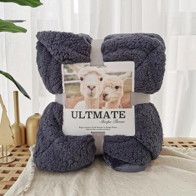 马卡龙双层羊羔绒毛毯加厚单双人盖毯珊瑚绒毯子 200*230cm 深空灰