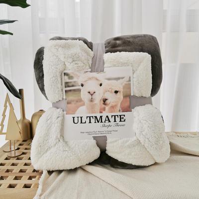 马卡龙双层羊羔绒毛毯加厚单双人盖毯珊瑚绒毯子 150*200cm 太空银