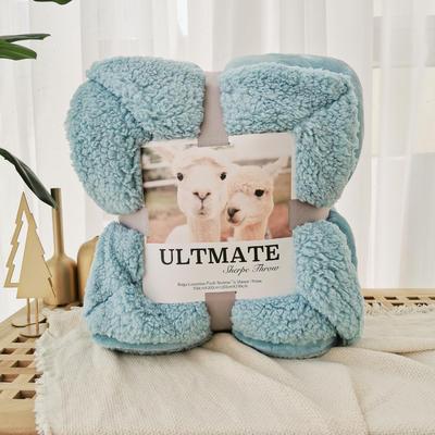 马卡龙双层羊羔绒毛毯加厚单双人盖毯珊瑚绒毯子 200*230cm 蔚蓝