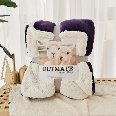 马卡龙双层羊羔绒毛毯加厚单双人盖毯珊瑚绒毯子 200*230cm 温莎紫