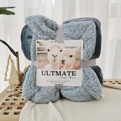 马卡龙双层羊羔绒毛毯加厚单双人盖毯珊瑚绒毯子 200*230cm 烟雾蓝
