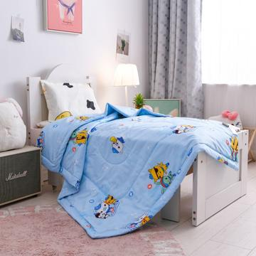 2020新款13372全棉儿童幼儿园纯棉夏被空调被可水洗被芯