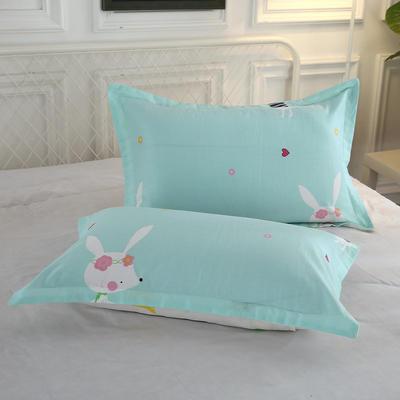 全棉多规格系列(单品枕套)全棉枕套  一对装 48cmX74cm --2个装 一见倾心