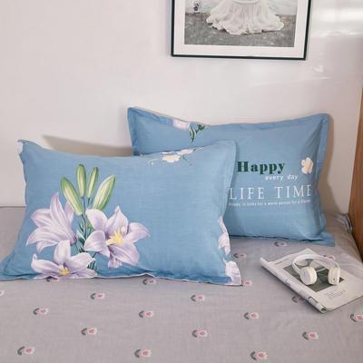 单品枕套2021新款12868全棉系列 48*74cm/对 花影 蓝
