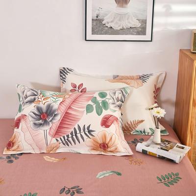 单品枕套2021新款12868全棉系列 48*74cm/对 梦幻