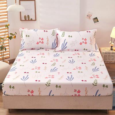 全棉单品床笠2021新款12868 180cmx200cm 森物语