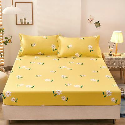 全棉单品床笠2021新款12868 180cmx200cm 小雏菊-黄