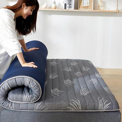 2020年新款防塌陷乳胶记忆海棉床垫 针织棉健康舒适床垫 0.9x1.9米 草冷灰5cm