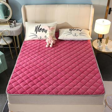 2020新款牛奶绒床垫 网红热款床垫 防滑可机洗保暖床褥子 防滑地垫 支持定制