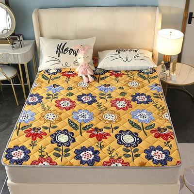 2020新款牛奶绒床垫 网红热款床垫 防滑可机洗保暖床褥子 防滑地垫 支持定制 0.9x2.0m 秘密花园