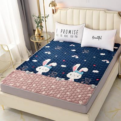 2020新款法莱绒保暖床褥床垫 0.9x2.0米 彩虹兔
