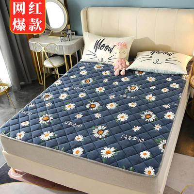 2020新款牛奶绒床垫 网红热款床垫 防滑可机洗保暖床褥子 防滑地垫 支持定制 0.6x1.2m 雏菊之恋