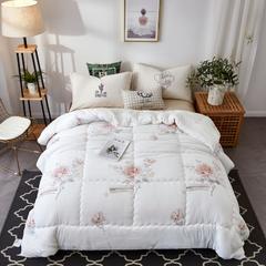 2018新款-水洗棉被子被芯 150*200cm/4.2斤 爱丽丝
