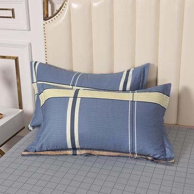 2020新款全棉印花单品枕套 48cmX74cm/对 欢乐格-蓝