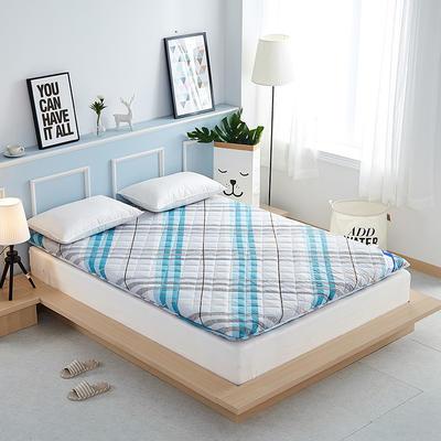 2019新款-奢华全棉羊毛加厚床垫 0.9*2.0米 经典条纹