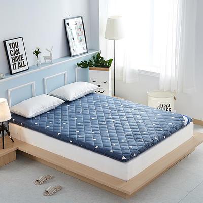 2019新款-奢华全棉羊毛加厚床垫 0.9*2.0米 三角世界